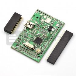 Kontroler z ATmega8 do wyświetlacza LCD z możliwością podłączenia dodatkowych modułów - MOD-33