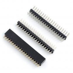 Zestaw goldpin raster 2,54mm - Raspberry Pi Zero