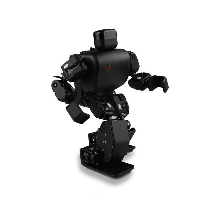 Robot humanoid RoboBuilder