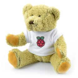 Miś Babbage z logo Raspberry Pi