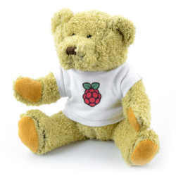 Teddy bear Babbage with the logo of the Raspberry Pi