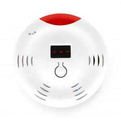 Coolseer - WiFi carbon monoxide (carbonate) - COL-CGS01W