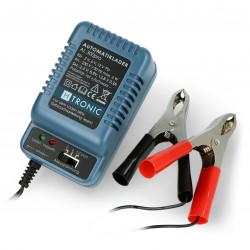 Charger for gel batteries AL 300pro 2V / 6V / 12V - 0.3 A