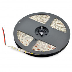 Strip LED SMD5050 IP65 14,4W, 60 LED/m, 10mm, cold white - 5m
