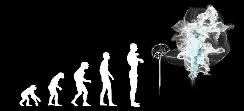 Sztuczna inteligencja Botland