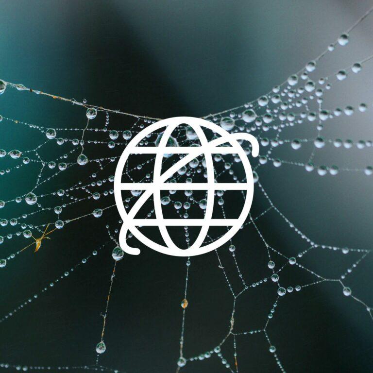 Sieć pajęcza jako internetowa sieć WWW